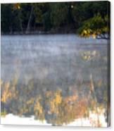 Dark Shoreline Frames Misty Fall Reflections On Jamaica Pond Canvas Print