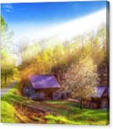 Misty Spring Morning Canvas Print