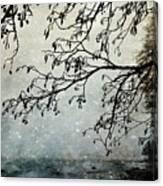 Misty Tide Canvas Print
