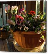 Mixed Basket, Balcony Garden, Hunter Hill, Hagerstown, Maryland, Canvas Print