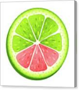 Mixed Lemon Canvas Print