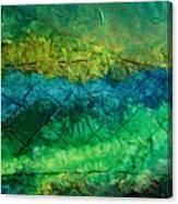 Mixed Media 02 By Rafi Talby Canvas Print