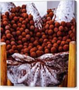 Mmmm Chocolate Canvas Print