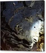 Mnemosyne Canvas Print