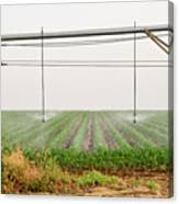 Mobile Irrigation Robot  Canvas Print