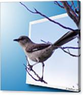 Mockingbird Branch Canvas Print
