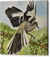 Mockingbird Landing Canvas Print