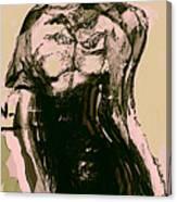 Model IIi Canvas Print