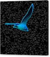 Moewe - Seagull Canvas Print