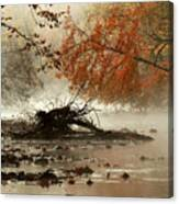 Mohican In Autumn Canvas Print
