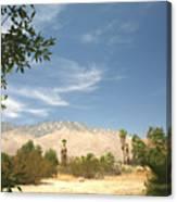 Mojave Canvas Print