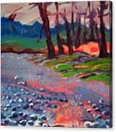 Molalla River Shore 7 Canvas Print