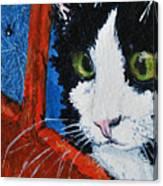 Molly Canvas Print