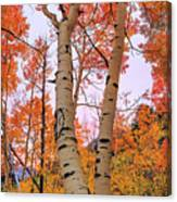 Moments Of Fall Canvas Print