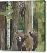 Momma With 4 Bear Cubs Canvas Print