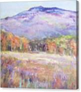 Monadnock In Spring Color Canvas Print