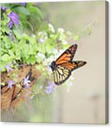 Monarch And Garden Basket Canvas Print