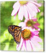 Monarch Butterfly Art Canvas Print