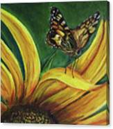Monarch Butterfly On A Sunflower Canvas Print