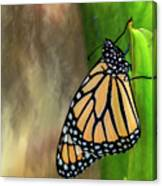 Monarch Butterfly Poised On Green Stem Canvas Print