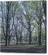 Monarch Park - 1100 Canvas Print