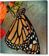 Monarch Canvas Print