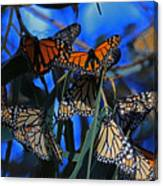 Monarchs In Paradise Canvas Print