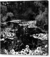 Monet Lake Canvas Print