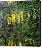 Monet's Garden Abstract II Canvas Print