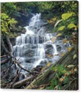 Money Brook Falls Mount Greylock Canvas Print