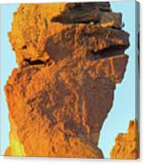 Monkey Face Pillar At Smith Rock Closeup Canvas Print