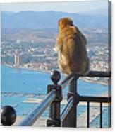 Monkey Overlooking Spain Canvas Print