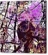 Monkey Tree Zoo Animals Nature  Canvas Print