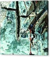 Mono Birch Bark Canvas Print