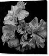Mono Flower Chrome Canvas Print