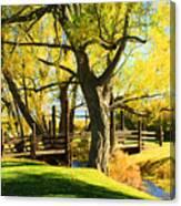 Mono Lake Garden Bridge Canvas Print