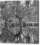 Monochrome Autumn Reflections Canvas Print