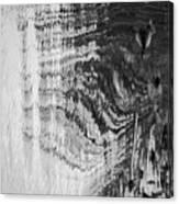 Monochrome Water Canvas Print