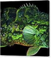 Monster Melon Canvas Print