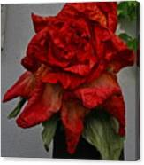 Monster Red Flower Canvas Print