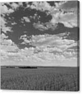 Montana, Big Sky Country Canvas Print