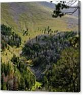 Montana Call Of The Wild Canvas Print