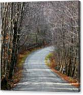 Montgomery Mountain Rd. Canvas Print