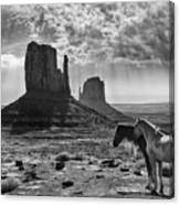 Monument Valley Horses Canvas Print