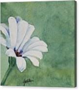 Mood Flower II Canvas Print