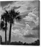Moody Florida Sky Canvas Print