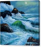 Moody Shores Canvas Print