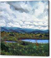 Moody Wetlands Canvas Print
