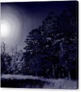 Moon And Dreams Canvas Print