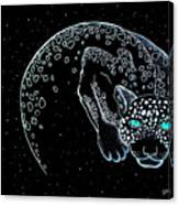 Moon-cat  Canvas Print